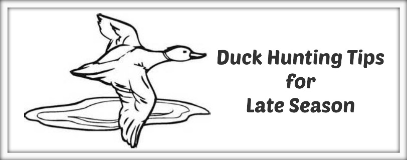 Duck-Hunting-Tips-for-Late-Season