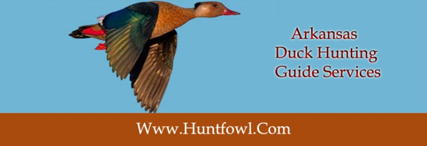 arkansas-duck-hunting-guide-services